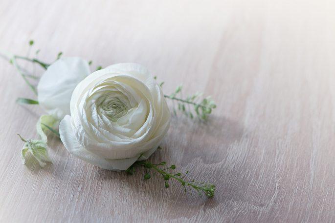 flower-1316753_1280